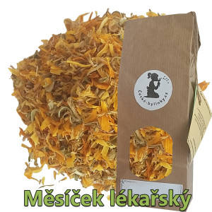 mesicek_lekarsky_suseny_kvet